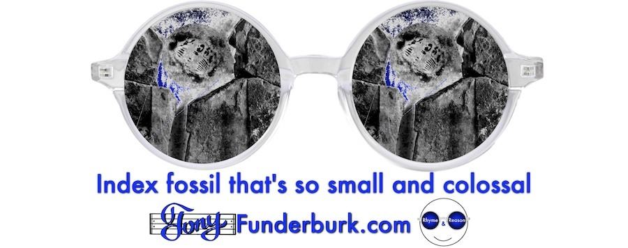 Index fossil that's so small and colossal
