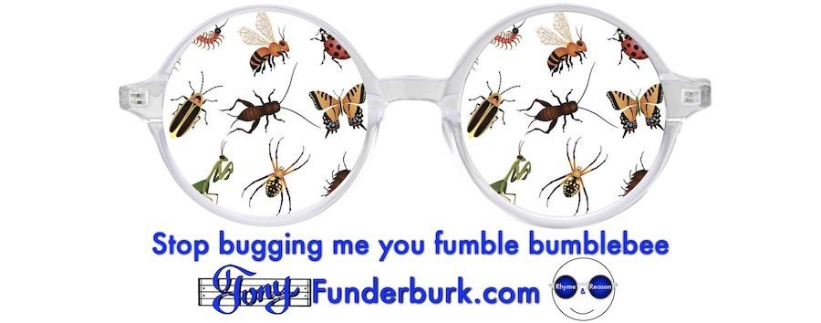 Stop bugging me you fumble bumblebee