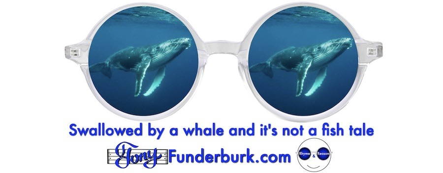 Swallowed by a whale and it's not a fish tale