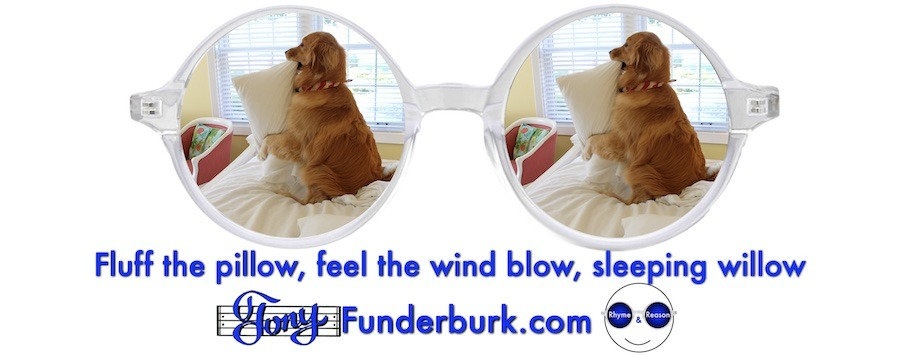 Fluff the pillow, feel the wind blow, sleeping willow