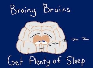 Children's writer, Tony Funderburk, shares a rhyme time about how sleep is good for the brain.