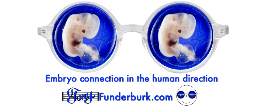Embryo connection in the human direction