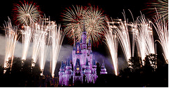 Celebrate life during the New Year's fireworks.