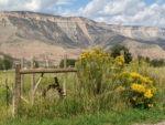 Old Water Wheel near Rifle Colorado